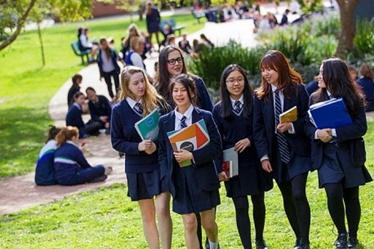 澳洲留学高中最佳时间岁高中生掐死17图片